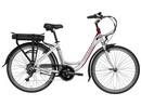 Rower elektryczny Lovelec Polaris SILVER / RED, rama 19, akumulator bagażnikowy 16 Ah, 250 W, silnik tylny